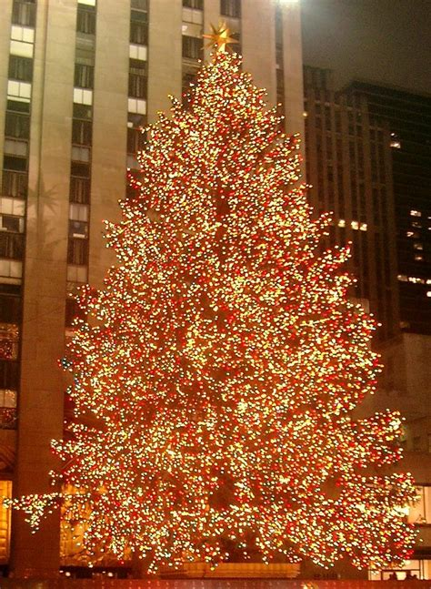 Rockefeller Center Christmas Tree 2014: 5 Things to Know