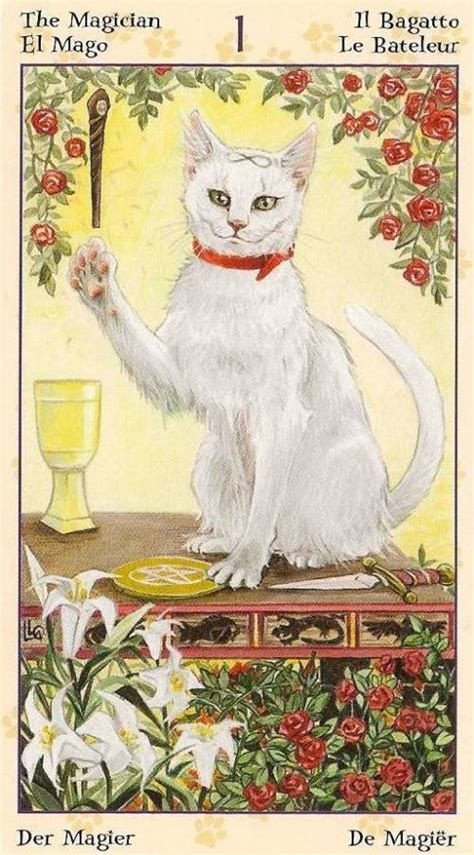 Tarot Notes: Interview with Tarot of Pagan Cats (by Zanna)