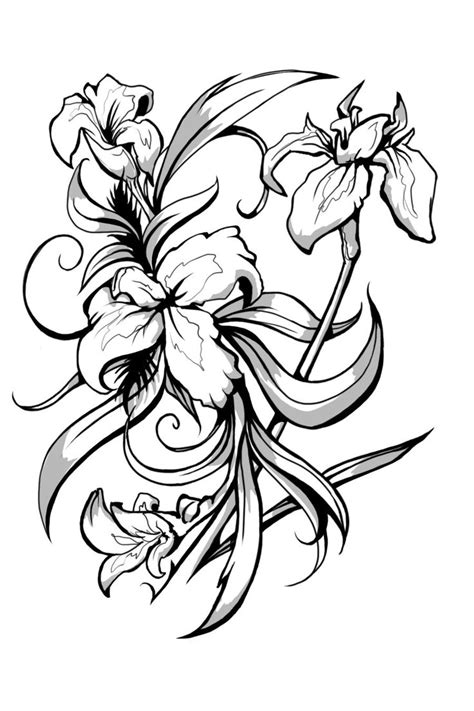 Lily Tattoo Drawing   Free download on ClipArtMag