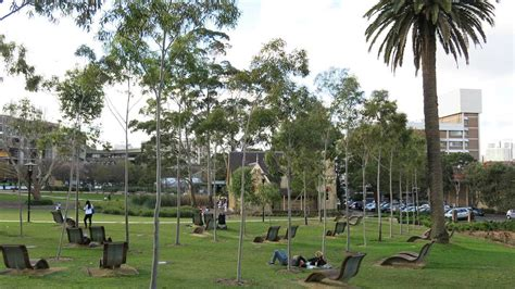 Study Abroad at the University of Sydney   TEAN Study Abroad