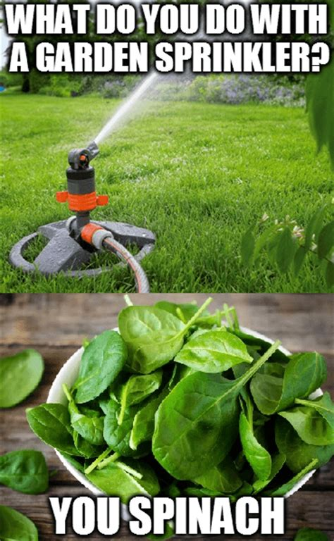 5 Gardening Memes to get You Smiling and Laughing - Weedicide