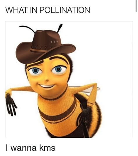 Funny Pollination Memes of 2017 on me