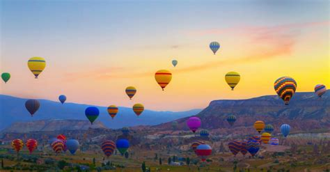 Your Ultimate Guide to the Albuquerque International