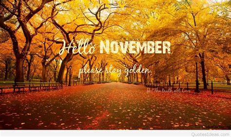Hello November pictures, sayings quotes and wallpapers